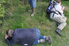 morielje Koeberg 2009 (6)